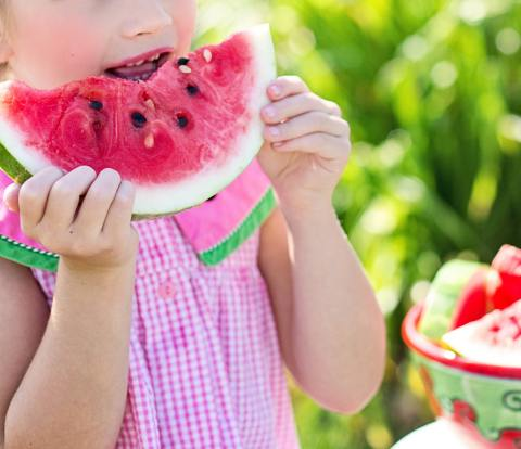 child healthy nutrition grocery shopping