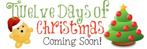 12 Days of Christmas Coming Soon to KatersAcres