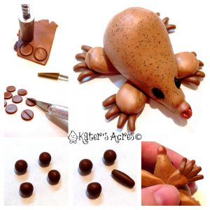 How to Make Your Echidna's Claws