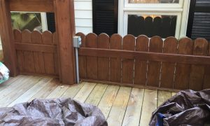 Painting the Family Deck