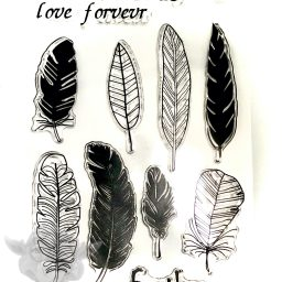 Forevr Feather Stamp Set from Kater's Acres