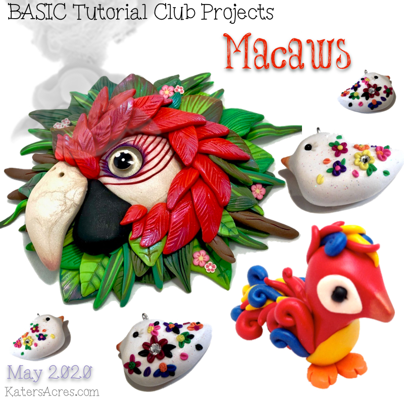 Whimsical Sculpting Tutorials CLUB - Macaws - May 2020 BASIC