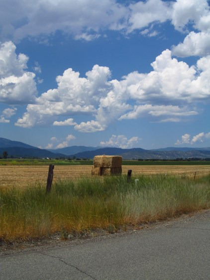 The four sized bales