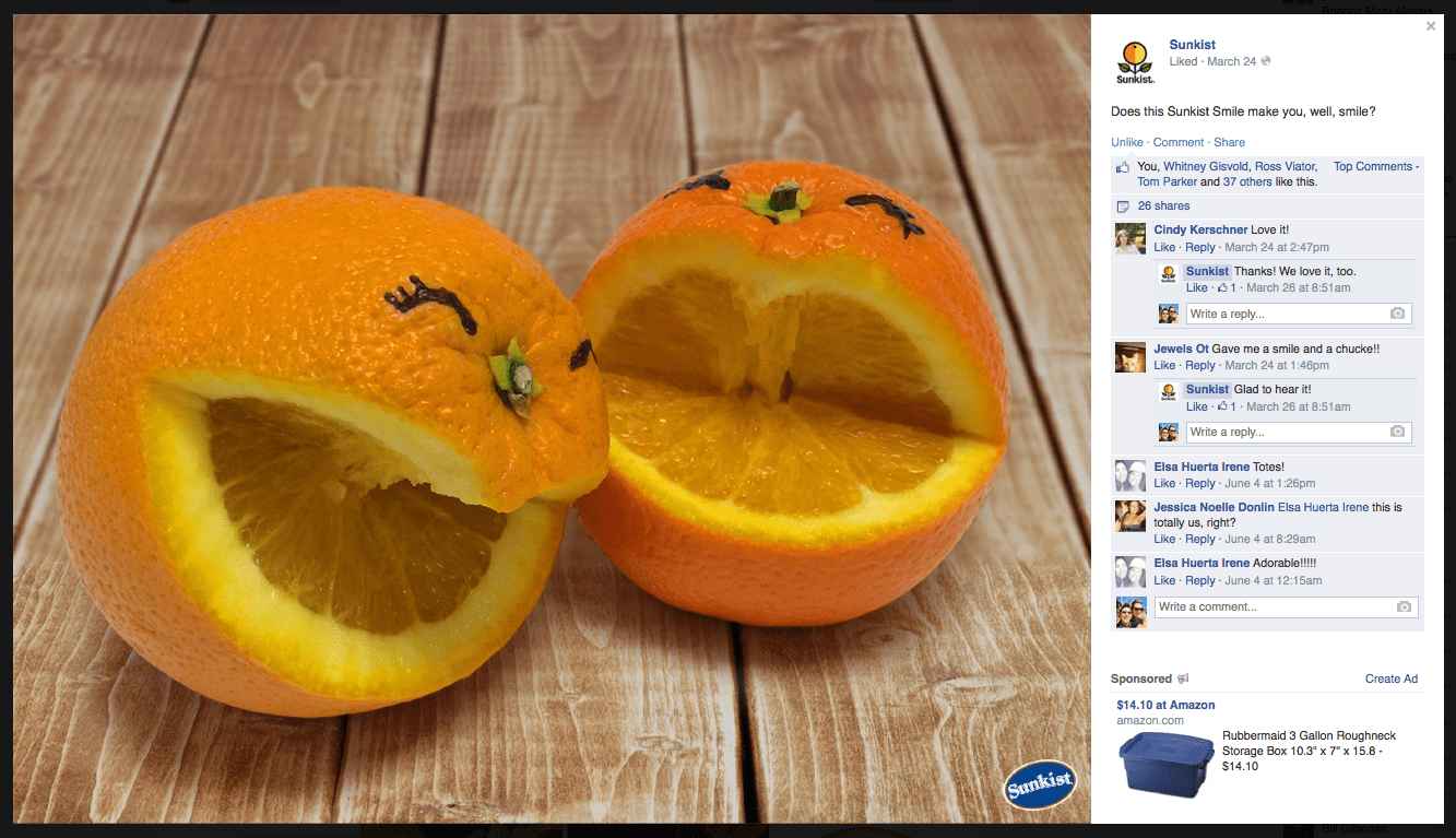 cutefruit_oranges_insitu