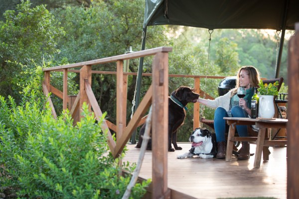 Nature, wine, and my dog...I could get used to glamping!
