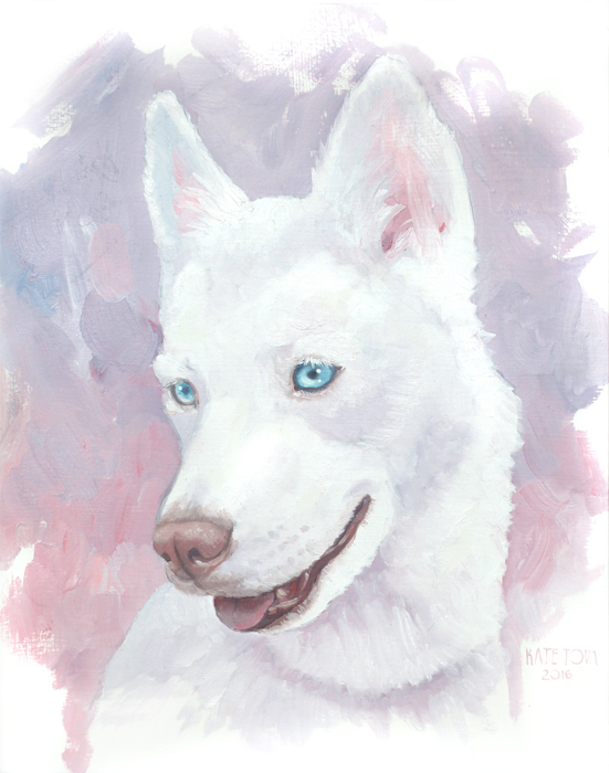 oil painting, white dog, husky, dog painting, dog art, dog portrait, oil portrait, oil on canvas, art, artwork, painting, original, realistic, painting for sale, sold, fine art, buy a painting, wall art, gift, christmas, artist, canine art, dog artist, contemporary painting, painting gallery, painting, custom art, custom paintings, animals, animal, usa, america, american art, blue eyes, turquoise, Kate Tova artist, christmas, gift, anniversary, new year, birthday present, unique, exclusive, expensive, luxurious, living room, guestroom, Kate Tova, wedding gift, Valentines day gift, hand painted, art for dining room, guest room, living room, bedroom, print, oil on paper
