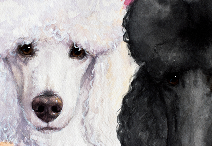 Custom Watercolor Pet portrait poodle handmade High Quality Realistic painting from your photographs Wall Art gift for animal dog cat lover christmas anniversary birthday present usa