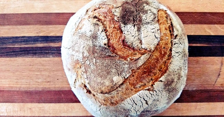 Do You Have The Sourdough Pains?: A Couch Adventure