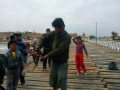 Pacasmayo, squid catching and killing