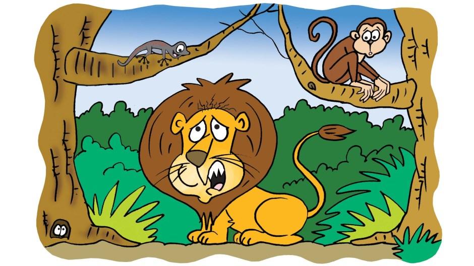 Lion Stroy