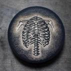 Anatomical Ribs - Wood Coaster