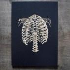 "Anatomical Ribs - 5x7"" Wood Engraving"