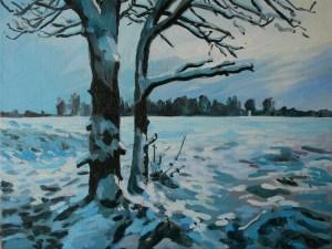 Snowy trees on Wimbledon Common
