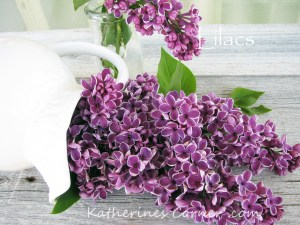 lilacs thursday favorite things blog hop