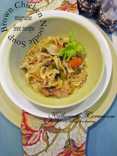 brown chicken noodle soup