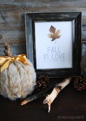 faux fur pumpkins craft