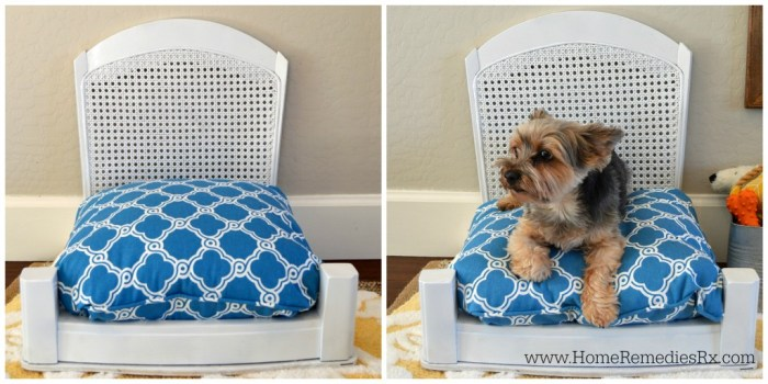 diy pet bed