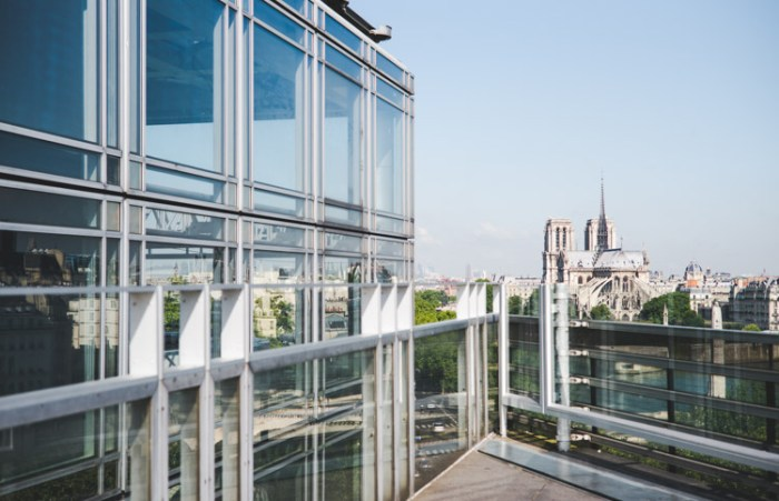 Paris-Notre-Dame-skyview