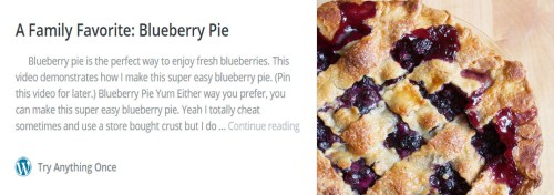 family favorite blueberry pie