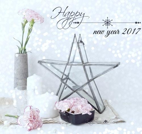 happy new year 2017 from Katherines corner