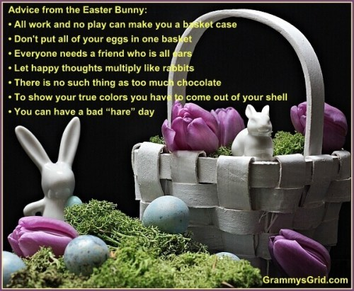 advice from the Easter Bunny