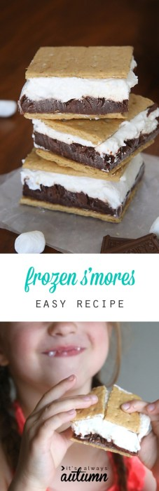frozen smores ice cream sandwich