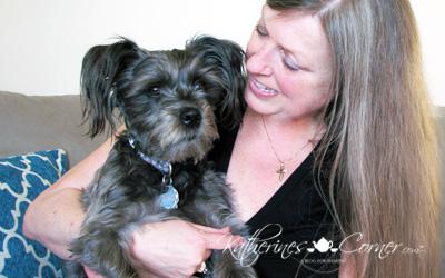 izzy the katherines corner blog dog