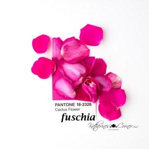 fuschia summer