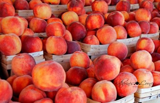 road trip farm fresh peaches