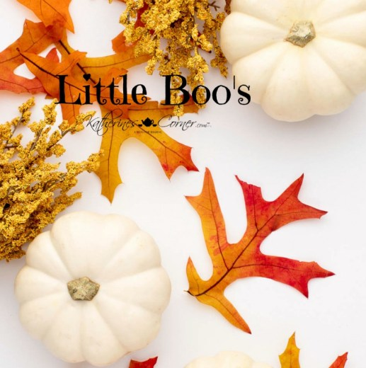 little boos 1