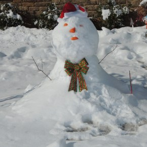 Just For Fun…The Joy.  I Went Out Searching for a Man…A Snowman