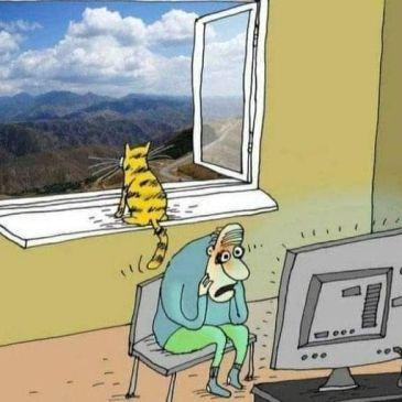 Wie ist Deine Perspektive?