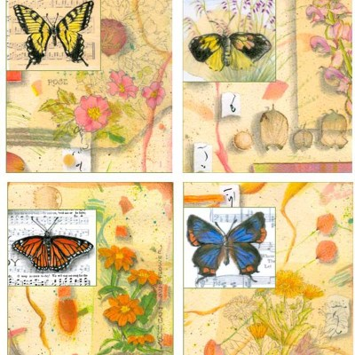 Butterflies Card Set 1
