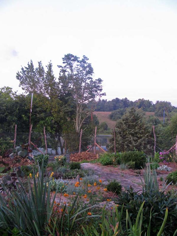 Fox Hutt's garden overlooking the pond