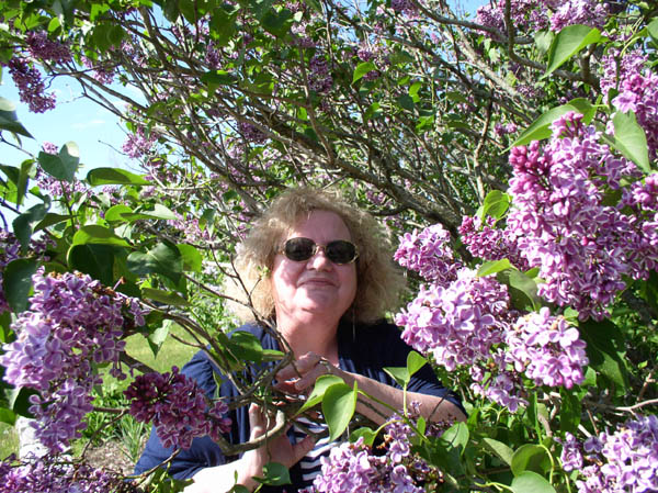 Gwen Heffner visits the Lilacs at Sumwise Farm and Sanctuary