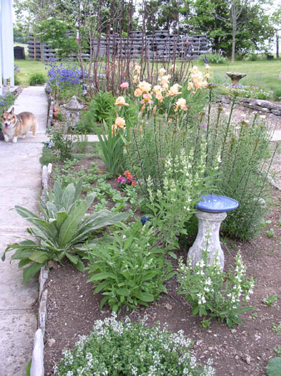 Garden Gaurdian by Herbs at Sunwise Farm & Sanctuary by Kathleen O'Brien
