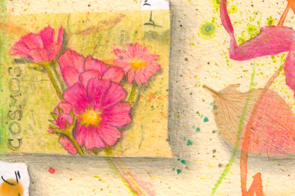 """Cosmos Flower Essence drawing, detail from """"Bee Dream 10"""" by Kathleen O'Brien"""