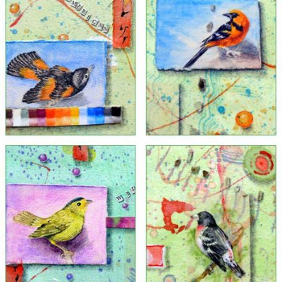 Garden Birds Card Set Kathleen O'Brien