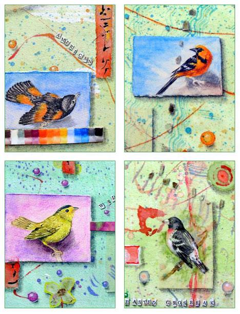 Garden Birds Card Set Kathleen O'Brien