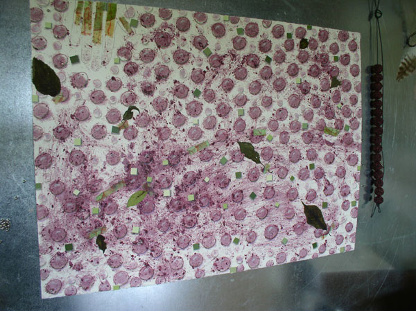 """Elder Harvest"" in process, elderberry beads drying, Kathleen O'Brien"
