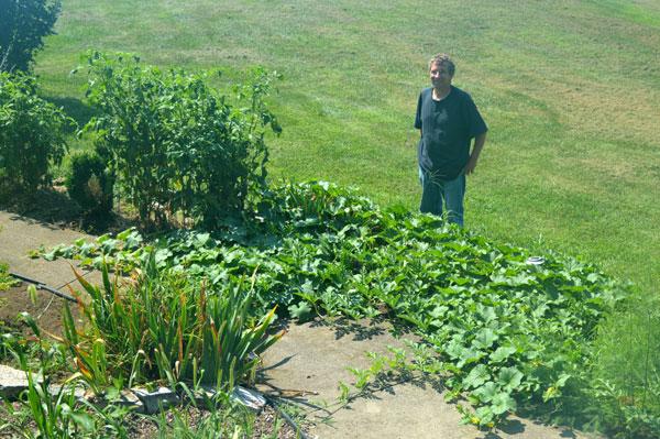 1 Cantaloupe plant Terrace rock work at Sunwise Farm and Sanctuary