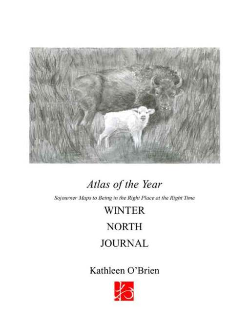 Atlas of the Year, Winter~North Journal by Kathleen O'Brien