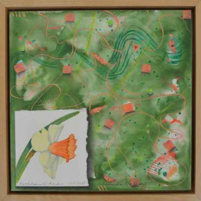 12 Sunwise Daffodil, ©Kathleen O'Brien, framed panel