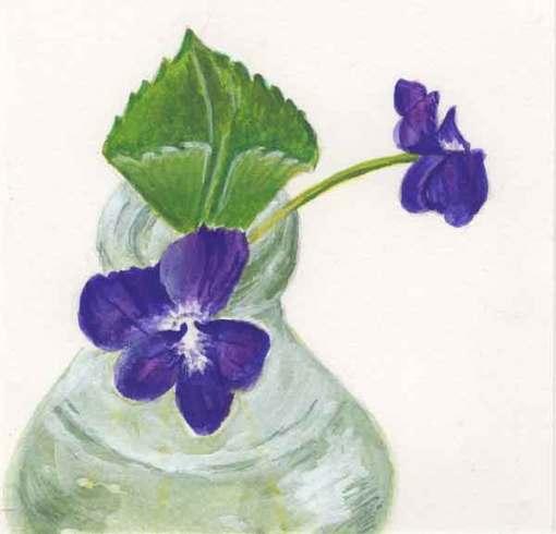 19 Sunwise Violets, © Kathleen O'Brien