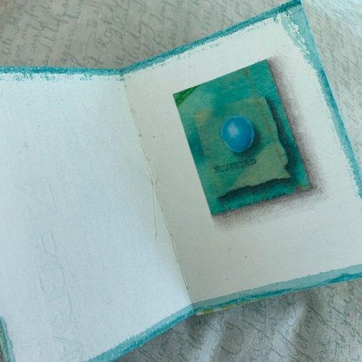 9 Bird Eggs Book, ©Kathleen O'Brien