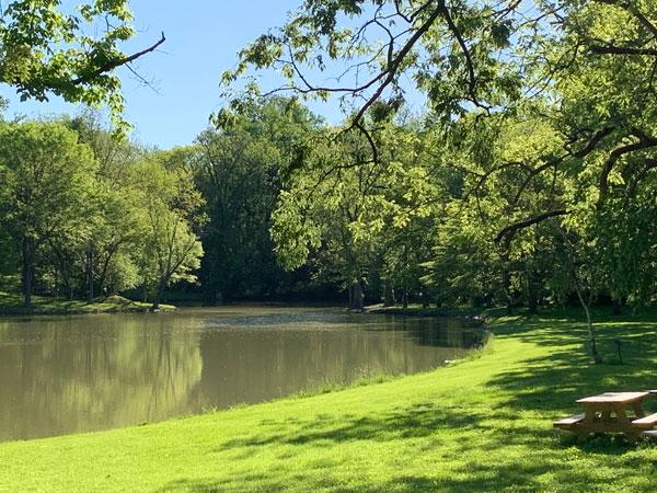 Tillich Park pond