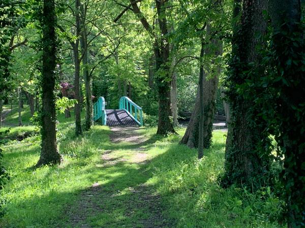Tillich Park pond, Monet bridge