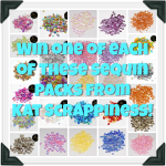 Kat's HUGE Sequin Giveaway!