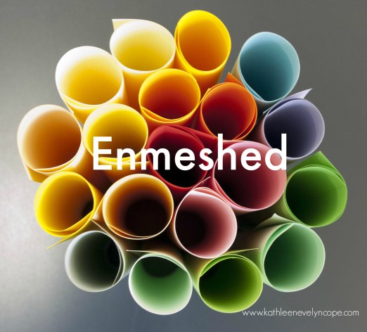 enmeshed