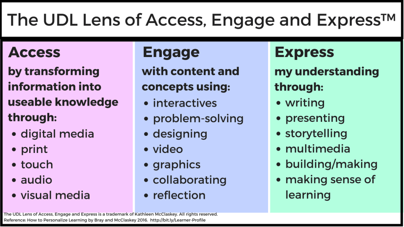 UDL Lens of Access, Engage and Express